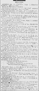 Chicago Daily News September 4, 1889