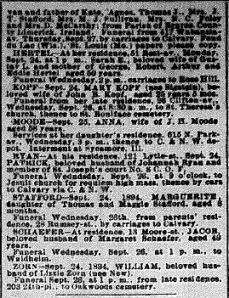 Chicago Daily News September 25, 1894 pg 7 part 2 of 2