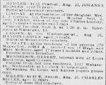 Chicago Daily News September 3, 1889
