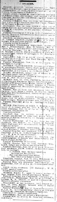 Chicago Daily News November 20, 1894 page 7