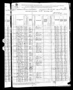1880 US Census MD Clark, Morgan Henry