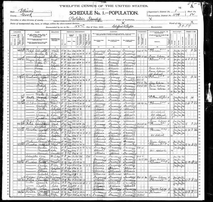 2015 02-15 Census Sunday Domkowsky