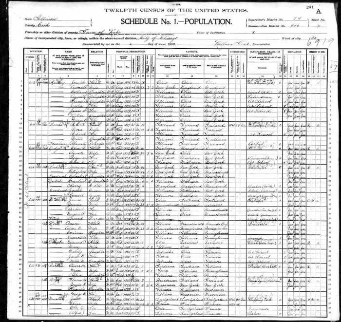 1900 US Census IL Mueller 1 of 2