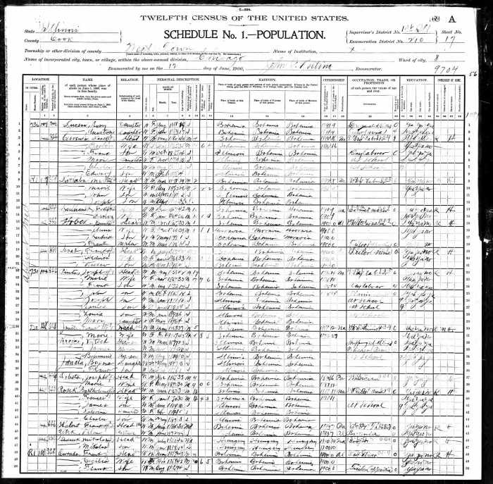 Year: 1900; Census Place: Chicago Ward 8, Cook, Illinois; Roll: 253; Page: 17A; Enumeration District: 0210; FHL microfilm: 1240253