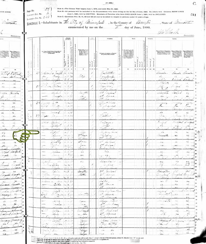 1880 US Census MN Ryan