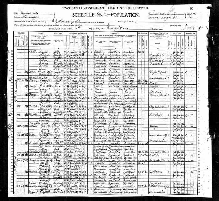 1900 US Census MN Ryan