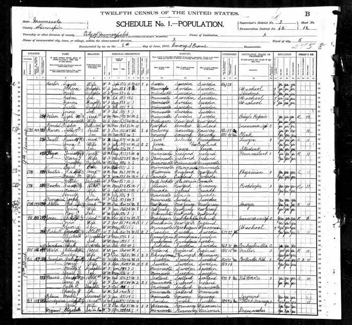1900 US Census MN Ryan